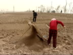 Farmers and workers in paddy fields Woman farm worker sifting soil and breaking up soil clumps with spade various of man and woman working in paddy...