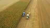 AERIAL Landwirte Schneiden Corn Silage