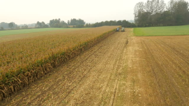 AERIAL Farmers Harvesting Corn