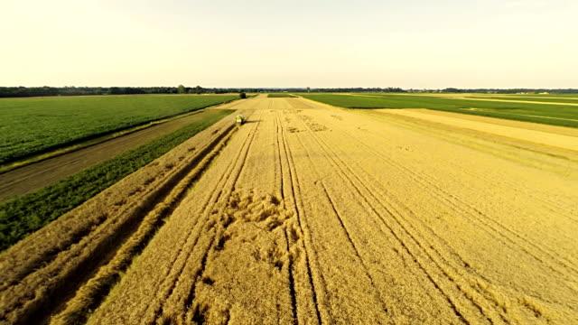 AERIAL Farmers Harvesting The Wheat