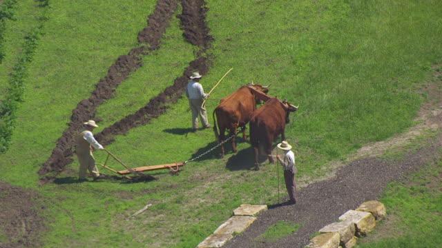 WS TS AERIAL POV Farmers ploughing field through ox plough / Iowa, United States