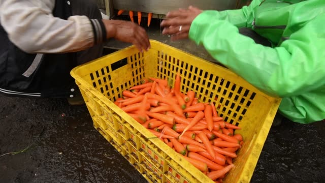 Farmers unload a crate of carrots into a vegetable washer at Bank Indonesias vegetable cluster program in Pangalengan West Java Indonesia on Monday...