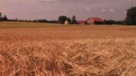 Farmhouse-Heißer Sommer