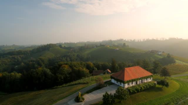 AERIAL Farmhouse In The Viniferous Region