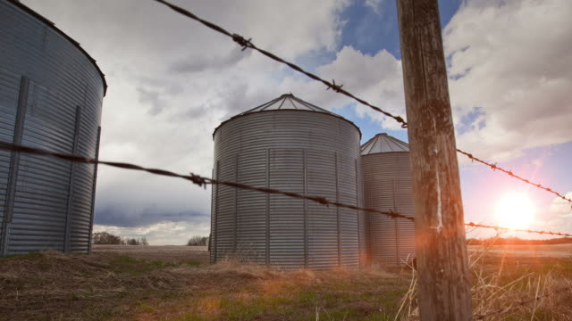 Farming grain bins