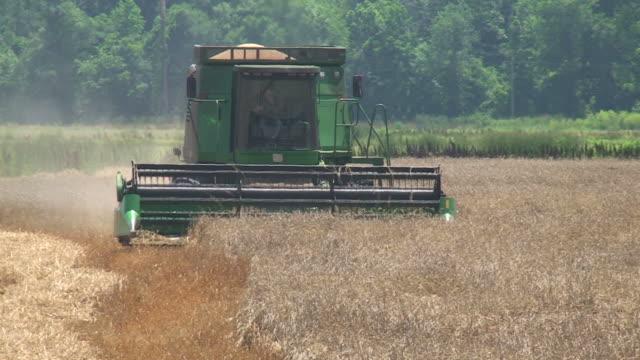 Landwirtschaft in den Feldern