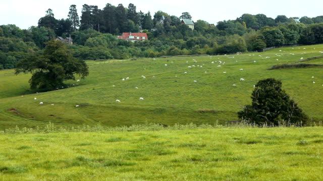 UK farmland with farmhouse