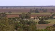 WS Farmland with trees / Wycheproof, Victoria, Australia