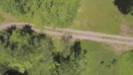 Snel dalen met rotatie. De luchtfoto drone direct boven uitzicht op de landweg en het riviertje in het bos in de Pocono Mountains op de zonnige zomerdag.