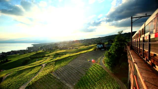 fast train passing vineyard near Lac Leman