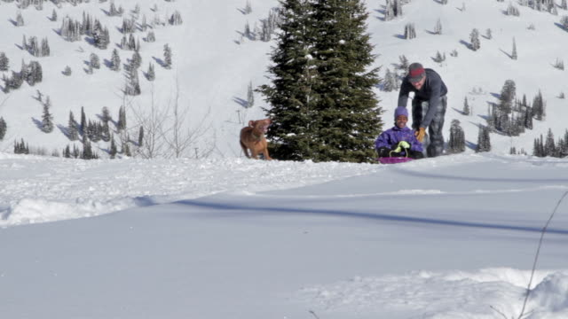 A father and daughter sled on a sunny, winter day