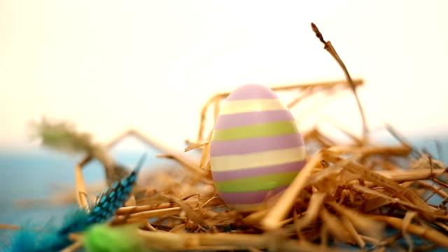 Uovo nido con le piume