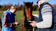 Feeding the Farm Horse