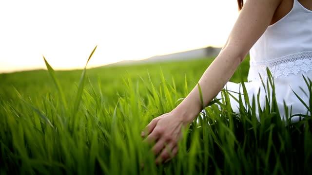Känner gräset