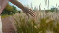 feeling nature