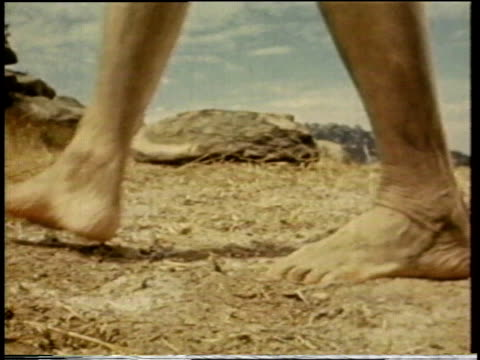 1941 MONTAGE feet, hooves and wheel / United States