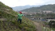 A 147 feet mountain of waste turned into a garden the Colombian city of Medellin transformed a landfill into a city park cared for by women who used...
