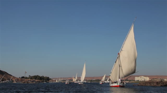 Feluccas & Tourist Boats On River Nile