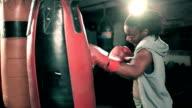MS Female Boxer Training.