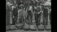 MS female crew in overalls picks peaches and puts them in baskets / MS row of women stand in front of their baskets bend over pick up a peach and eat...