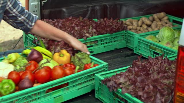 Vrouwelijke boer laden van een bestelwagen met produceren