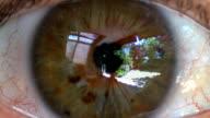 Female Green Eye HD
