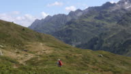 Female hiker walks through alpine meadow, in mountains