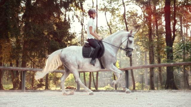 SLO MO LD Female horse rider riding a cantering horse