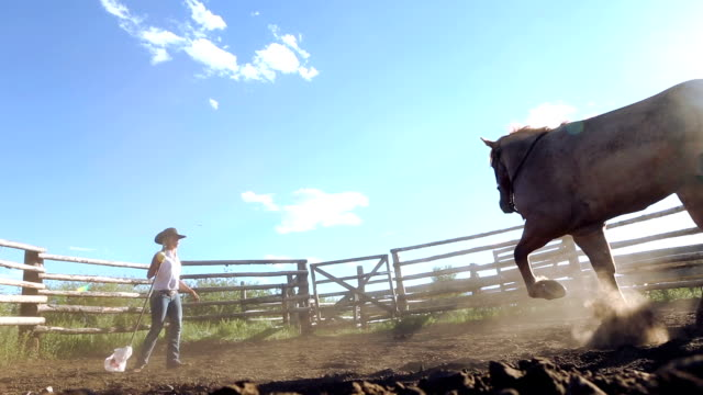 Female horse trainer breaking mustang in ranch corral