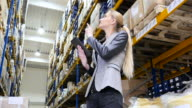 Female manager counting stocks in warehouse