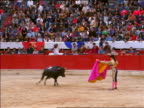 Female matador with pink cape dodging charging bull / Bogota, Colombia