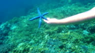Female swimmer with underwater camera receives starfish