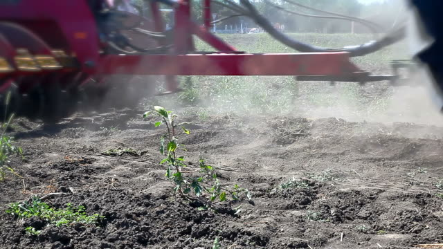 Field plowing