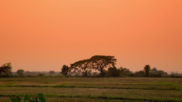 Feld Sonnenaufgang morgens