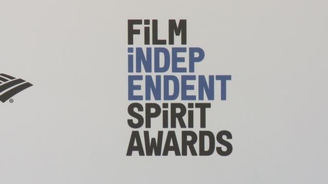 Film Independent Spirit Awards Arrivals on February 27 2016 in Santa Monica California