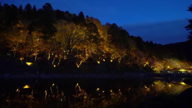 Film Tilt Korankei Forest park night with light illumination Nagoya Japan