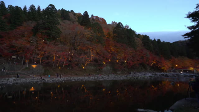 Film Tilt Korankei Forest Park Nacht mit Beleuchtung Nagoya Japan