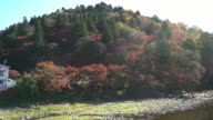 Film Tilt: korankei Forest park with Autumn Red Leave Nagoya Japan