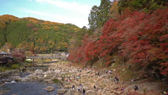 Film Tilt: korankei Forest park with Autumn Red Leave Nagoya Japan
