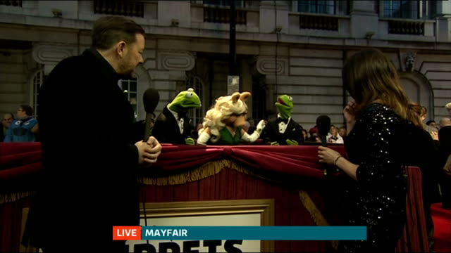 London premiere of 'Muppets Most Wanted' Reporter LIVE interview with muppets Kermit the Frog Miss Piggy and Constantine and comedian Ricky Gervais...