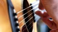 Fingerpickin' Guitarist