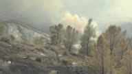 Firefighters and rescue workers battle to put out the Detwiler fire that has burned more than 45000 acres and destroyed eight structures