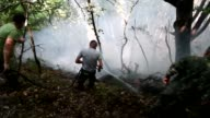 Firefighters hose water on bushes and trees to extinguish a wildfire on Mount Dajti east of the Albanian capital Tirana leaving some 25 fires active...