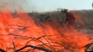 fireman and brush fire