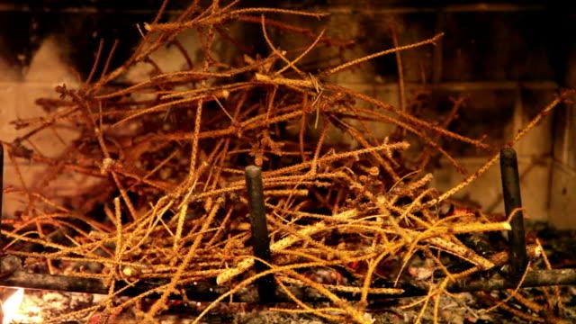 Fireplace 19 - HD 30P