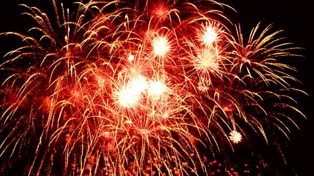 Firework In Night Sky Full HD Video
