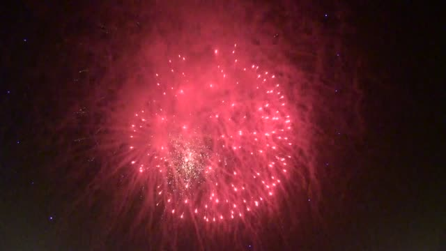 Fireworks lit up Islamabad's sky overnight from Thursday to Friday as Pakistan celebrated its 69th Independence Day