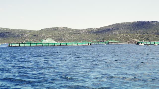 WS Fish farm in Adriatic sea