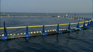 A fish farm pen floats in the Mediterranean Sea. Available in HD.