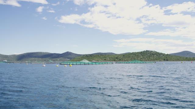 WS Fish farm
